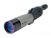 美国星特朗Ultima C20-60*80A观鸟镜望远镜 观靶镜 高倍 观景观星